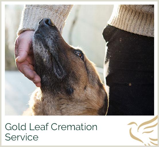 Gold Leaf Cremation Services